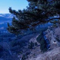 пейзаж :: Ирина Гракова