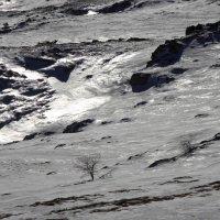 Сталь зимы :: Михаил Баевский