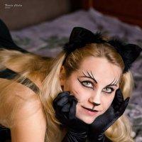 Кошка :: Natalie Chubar