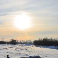 Зимнее солнышко :: юрий Амосов