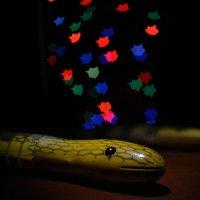 Год змеи :: Igor Kovalihin