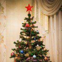 Новогодняя елка) :: Ирина Рыбакова