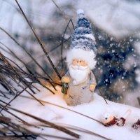 Новогоднее настроение :: Nataliya Belova
