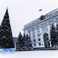 Городская Елка. Кемерово 2014 :: Yana Fizazi