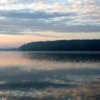 Туман над прудом :: Александр Коликов