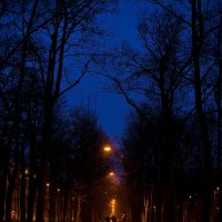 Вечер...Пушкин... :: Евгений Сомов