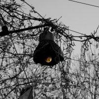 Старая лампа! :: Георгий Куценко