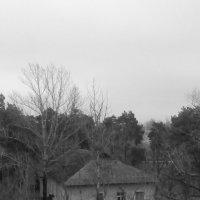 за окнами 2 :: Юлия Закопайло