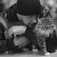 Любовь... :: Елена Васильева