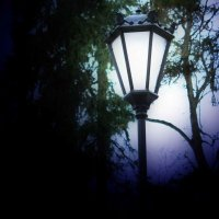 Одинокий фонарь. :: Александр Лейкум