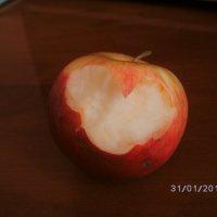 райское яблочко :: Таня Опрышко