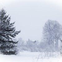зима в деревне :: Елена Новгородцева