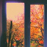 Осень на улице - осень в душе. :: Анна Шелепова