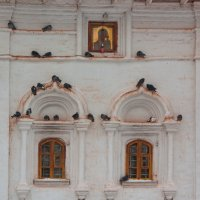 церковь и голуби :: Александр Шурпаков