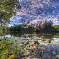 На реке Осетр :: Nikita Volkov
