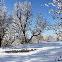 Первый снег1 :: Эля Османова