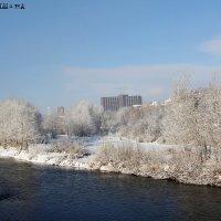 Первый снег3 :: Эля Османова