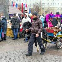 Катание на пони :: Юрий Стародубцев