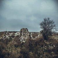 руины дома :: Alina Grib