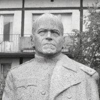 Г.К.Жуков (СПБ. пр. Славы) :: vadim