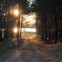Double Sun Power :: Никита Филатов