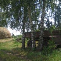 Сельский пейзаж :: Алина Тазова