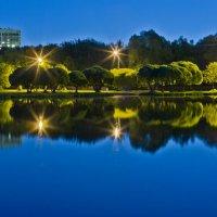 Парк Покровское-Стрешнево ночью. :: Игорь Герман