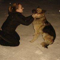 Собака никогда не предаст.. :: Оля Васильченко