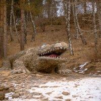 Крокодил :: Анна Брацукова