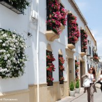 Апрельский праздник в Андалусии.Испания :: Виталий Половинко