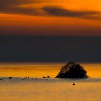 Морское чудище. :: Lidija Abeltinja