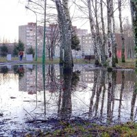 Зима, однако... :: Леонид Соболев