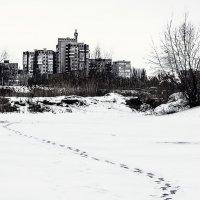 """Проект """"365"""" 10.01.2014 :: Александр Барышев"""