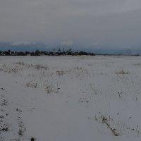 Зимний пейзаж :: Наталья Rosenwasser