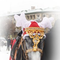 И празднично, и ушки в тепле!:) :: Дарья Казбанова