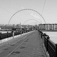 Мост через залив :: Валерий Шибаев