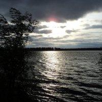 Любимый залив не в духе! :: Алёна Алексеева