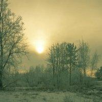 Вечер...туман... :: Наталья Григорьева