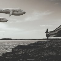 В небе кит :: Антон Никифоров