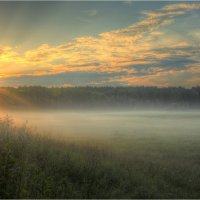 Вот и солнце :: Nikita Volkov