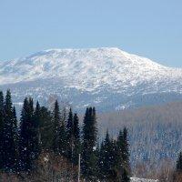 гора Мустаг, горная Шория :: Евгений Фролов
