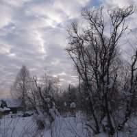 Причудливые облака порой бывают очень странны :: Нина северянка