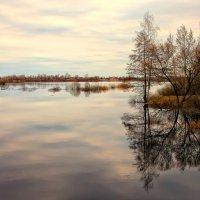 Весенний пейзаж :: Марина Назарова