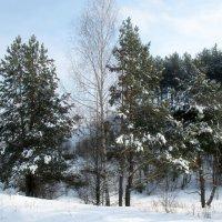 Зима 2009 :: Irina