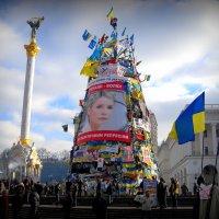 МАЙДАН :: Svetlana Kravchenko