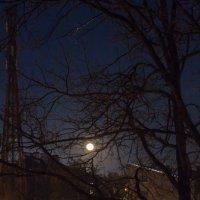 Восход Луны над городом в зимний вечер :: Александр Творогов
