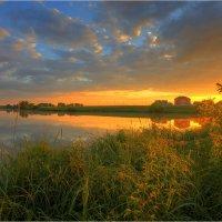 Утро на деревенском пруду :: Nikita Volkov