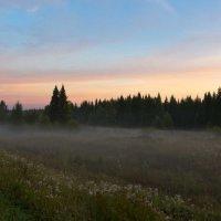Предрассветный туманец... :: Сергей