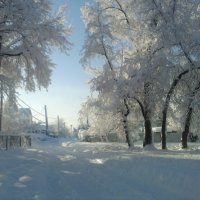 зима :: Иван Жданов