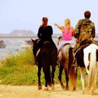 Море и люди :: Лилия Гиндулина